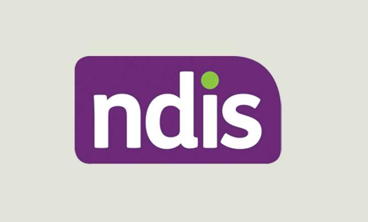ndis-homepage